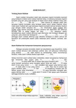 File asam nukleat tentang asam nukleat asam nukleat merupakan ccuart Images