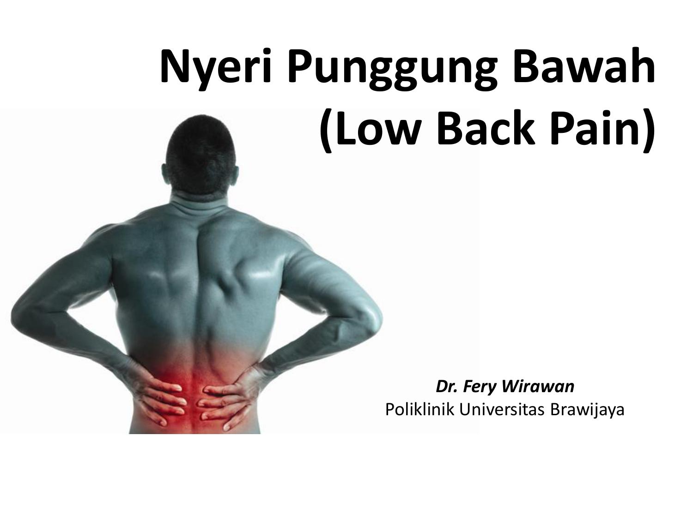 Nyeri Punggung Bawah Low Back Pain