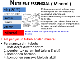 NUTRIENT ESSENSIAL ( Mineral ) Mineral