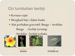 Taksonomi tumbuhan biologi uin alauddin makassar tumbuhan berbiji ccuart Images