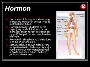 Hormon - WordPress.com