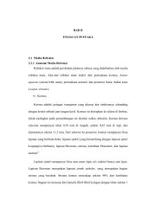 PELATIHAN PEMERIKSAAN TAJAM PENGLIHATAN - journal-ums