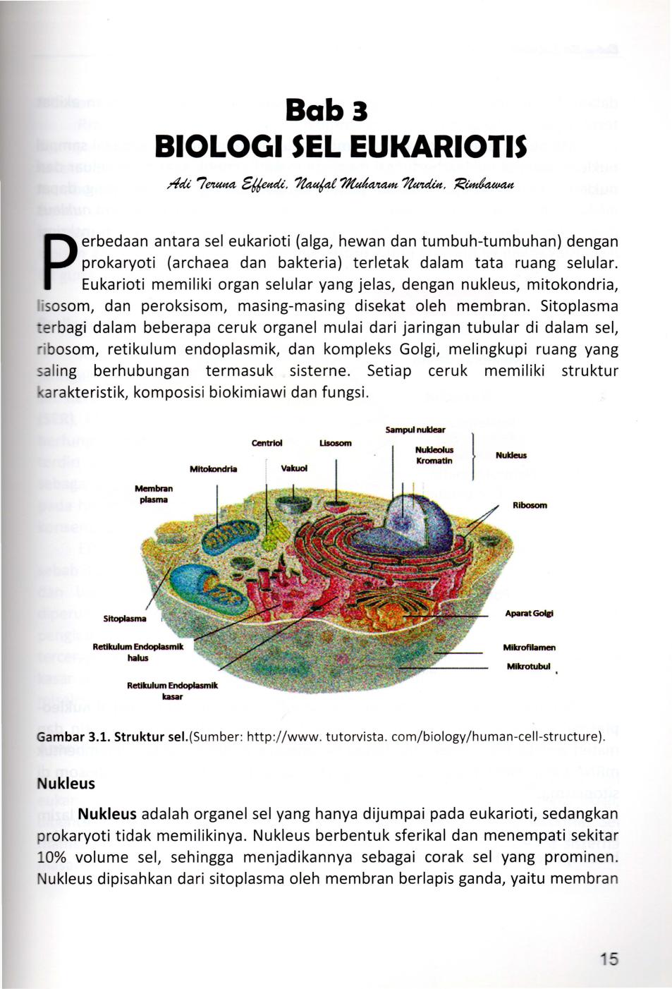 Bab3 Biolocii Sel Eukariotis