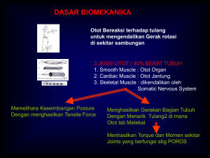 (Spinal Cord). - Binus Repository