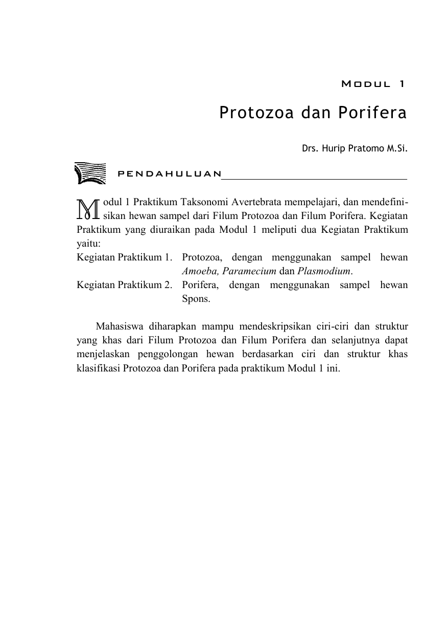 8500 Gambar Hewan Filum Protozoa Gratis Terbaru