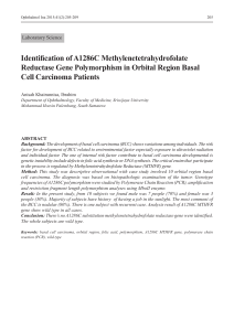 Identification of A1286C Methylenetetrahydrofolate Reductase Gene