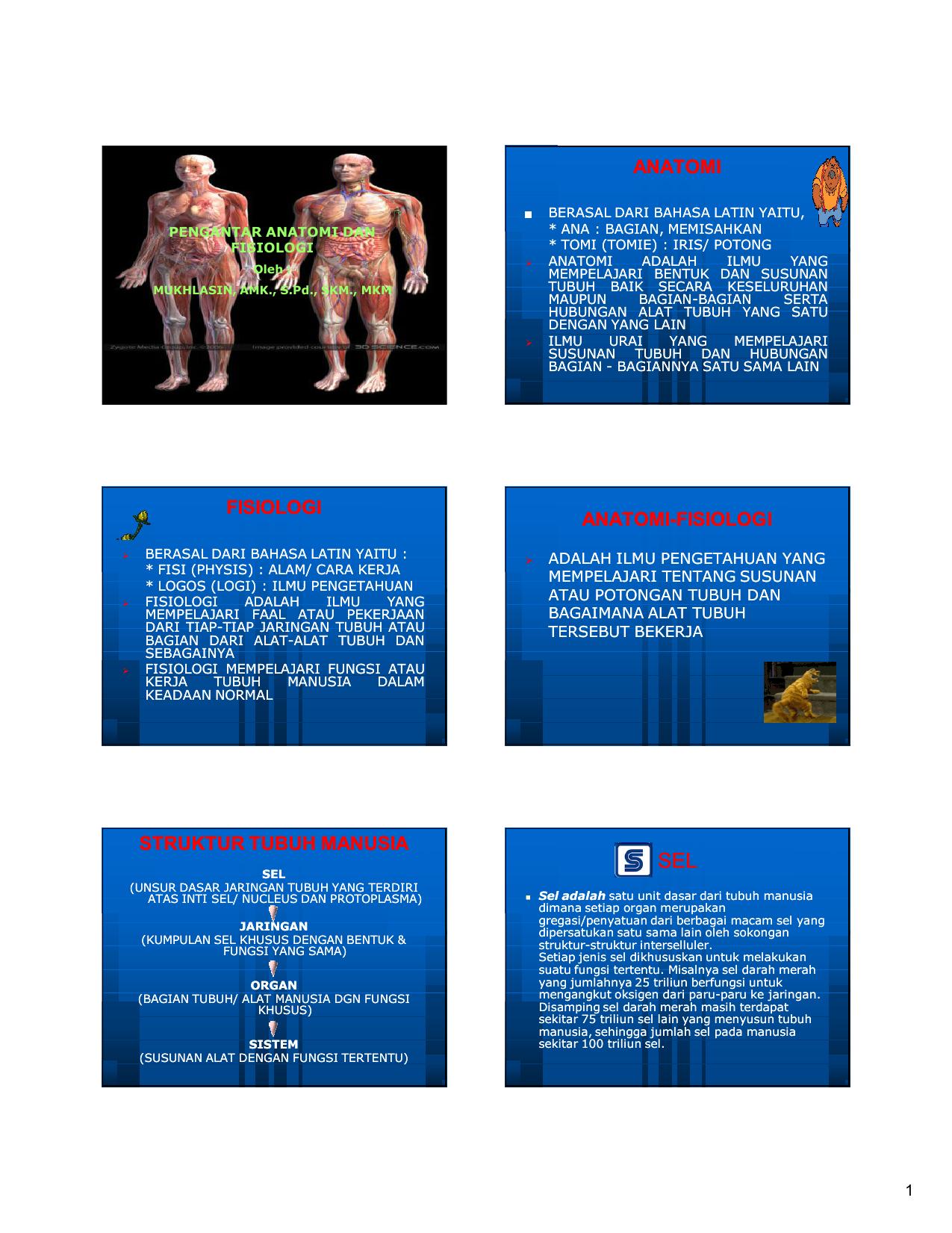 Anatomi Fisiologi Anatomi Fisiologi Fisiologi Struktur Tubuh Manusia