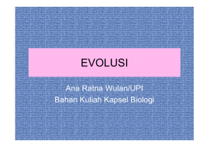 evolusi - File UPI