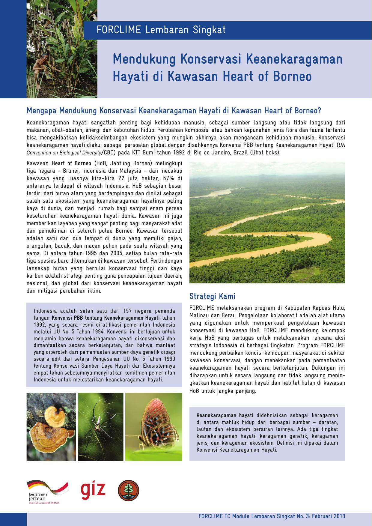 strategi paling penting untuk konservasi keanekaragaman hayati