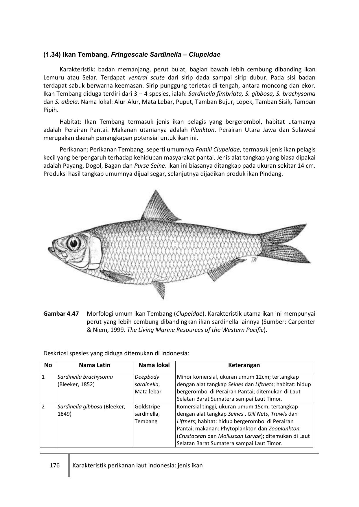 176 Karakteristik Perikanan Laut Indonesia Jenis Ikan 1 34 Ikan