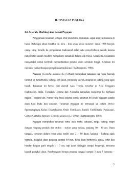 Patpi 3 5 ii tinjauan pustaka 21 sejarah morfologi dan botani ccuart Image collections