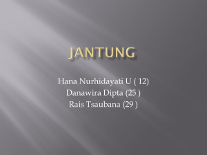 jantung - WordPress.com