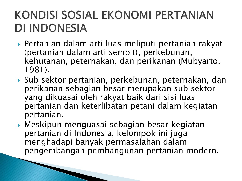 Kondisi Sosial Ekonomi Pertanian Di Indonesia