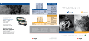 companion - MSD Animal Health (Australia)