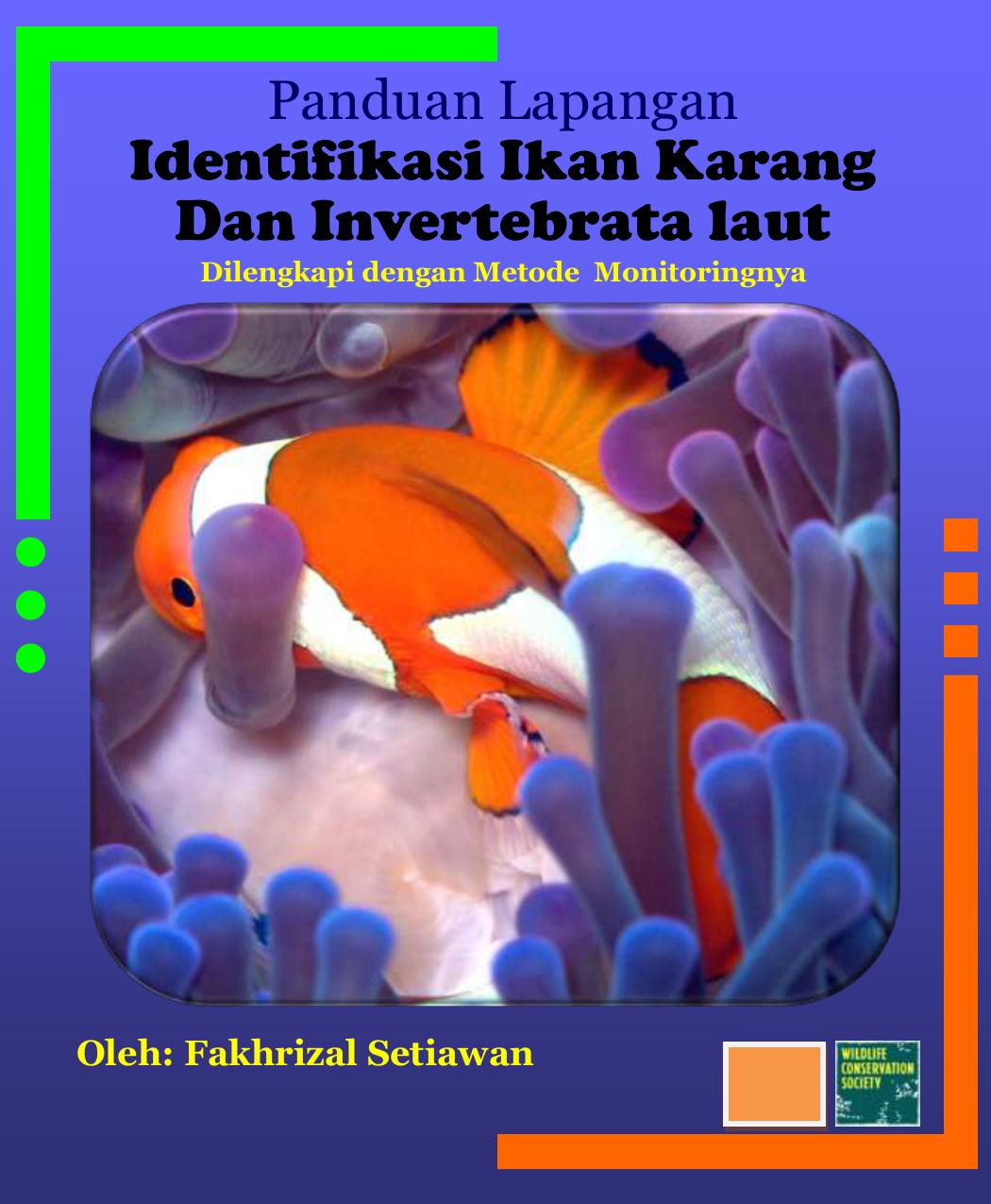Download 81 Gambar Ikan Barakuda Sirip Hiu HD Gratis