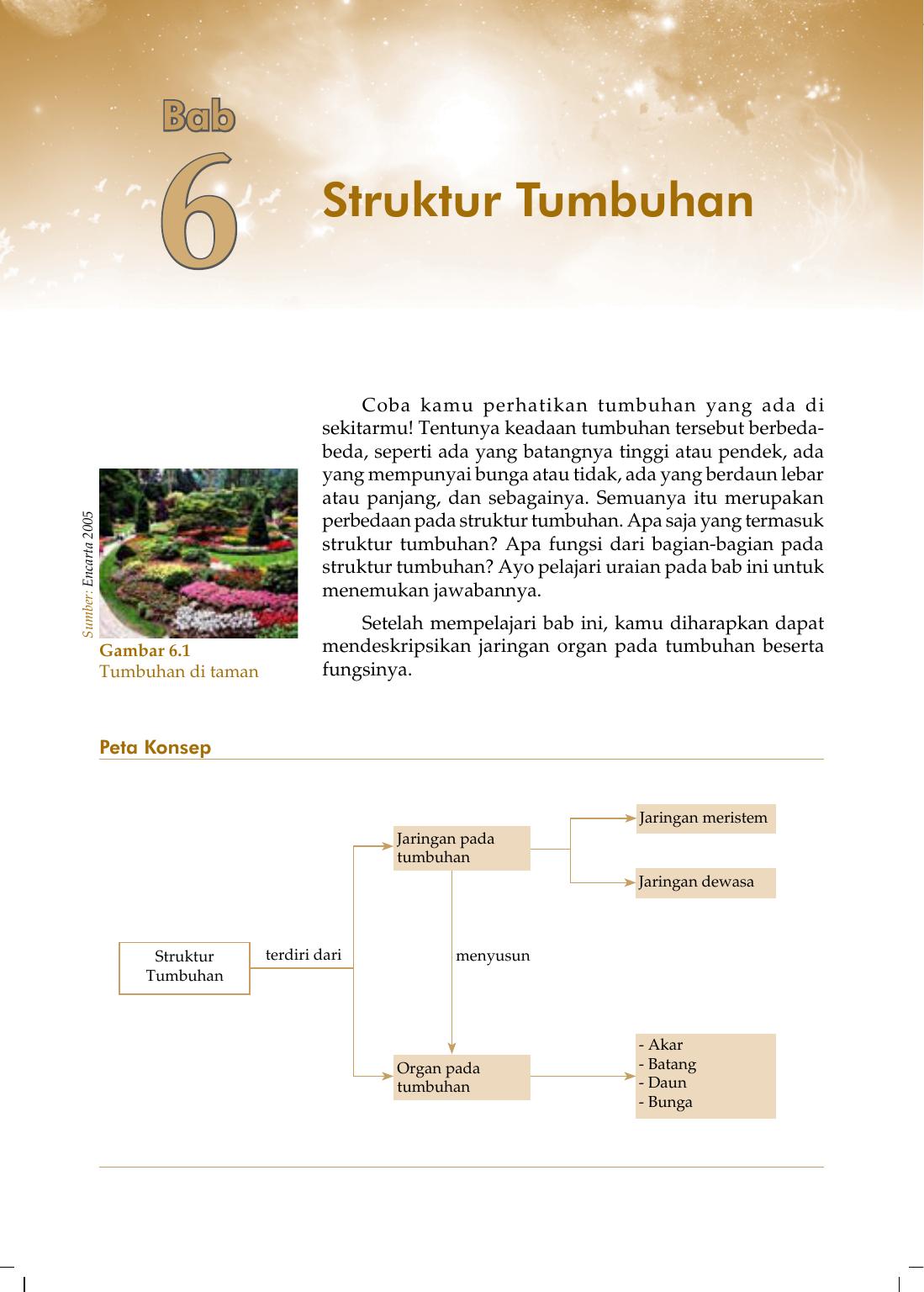 6 Struktur Tumbuhan