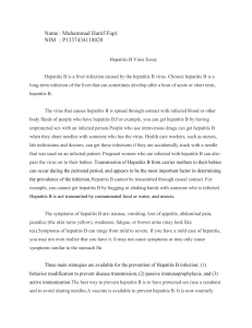 Hepatitis B Essay