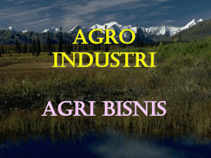NDS AGROINDUSTRIBW