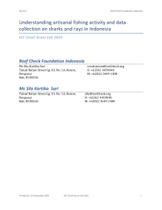Understanding artisanal fishing activity and data collection on sharks and rays in IndonesiaPacket (2)
