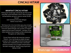 0812 3288 2925, Supplier Bubuk Cincau Hitam  Jember