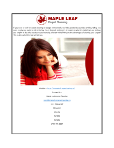 Best Carpet Cleaning Edmonton Maple Leaf Carpet Cleaning